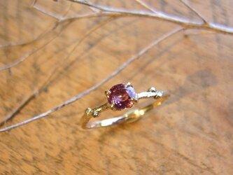 ピンクスピネルの小枝のリングの画像