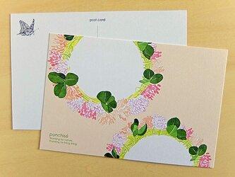 シロツメクサのポストカードの画像