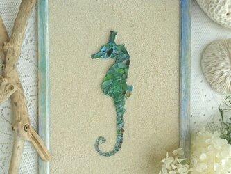 "Seaglass Walldecoration ""タツノオトシゴ""の画像"