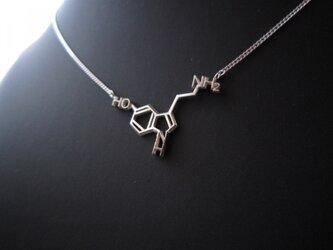 化学式アクセサリー® ネックレスの画像