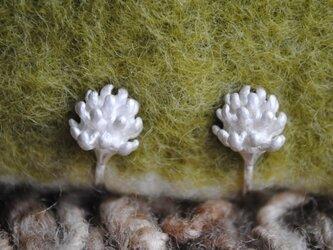 【受注制作】ミニしろつめ草の花イヤリング(上向き)の画像