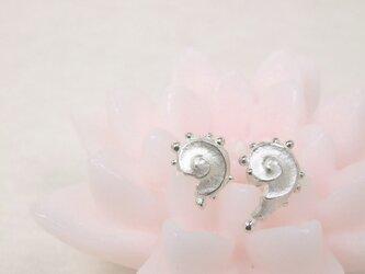 【Silver】petit UZU(プティ・ウズ)ピアスの画像