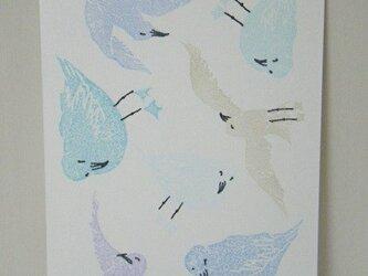 葉書〈seagull-1〉の画像
