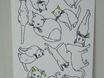 葉書〈CAT-2〉の画像