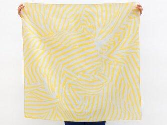 Stripe Yellowの画像