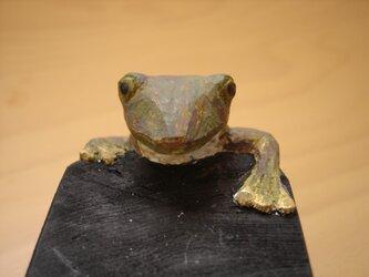 木彫りの蛙 かじかガエルの画像
