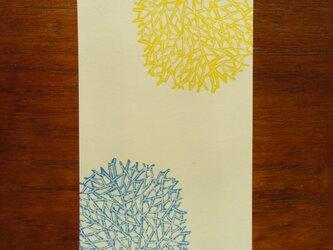 ポストカード(2枚) 珊瑚の画像