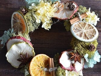 苔(モス) アジサイ 木の実 森リース ドライフルーツ プリザーブドフラワー  ギフト カフェ インテリアの画像