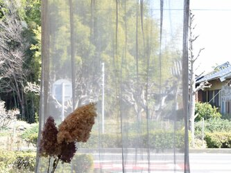 リネンレースカーテンの画像