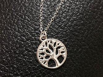 ツリー・オブ・ライフ 生命の樹ネックレス シルバーの画像