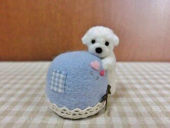 しがみつきトイプーちゃんのピンクッション(ブルー)の画像
