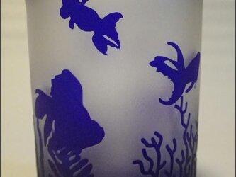 金魚【GoldFish】ロックグラスの画像