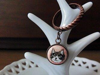 揺れるリング*ネコの画像