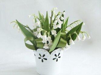 小さな植木鉢 清楚なスズランの画像