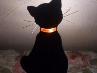 黒猫足元灯の画像
