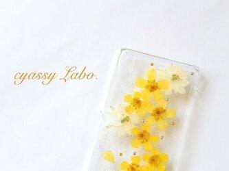 可憐な金鳳花  押し花スマートフォンケースの画像