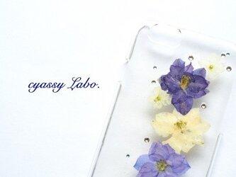 gallant(千鳥草ブルー)押し花スマートフォンケースの画像