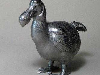 ドードー鳥の画像