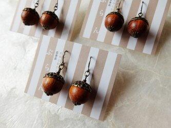【秋の足音♪】木製どんぐりのチタンフックピアスの画像