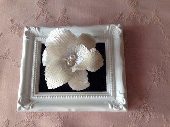 ウエディングコサージュ(胡蝶蘭)の画像