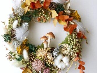 Dryflower wreathの画像