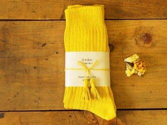 草木染めオーガニックコットンリブ編み靴下〜承和色(そがいろ)〜の画像