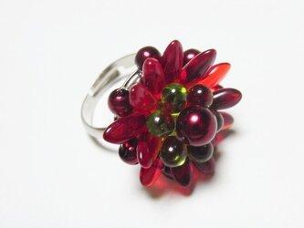 赤い花のリングの画像