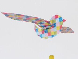 flappin' bird/B.カラフルの画像