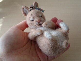 羊毛フェルト・眠るベビーうさぎの画像