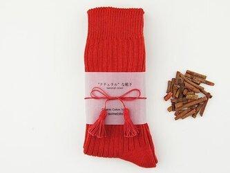 草木染めオーガニックコットンリブ編み靴下〜緋色(あけ)〜の画像
