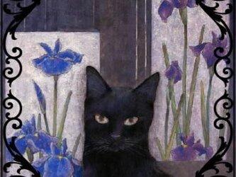 猫さんシール4枚セット(小)の画像