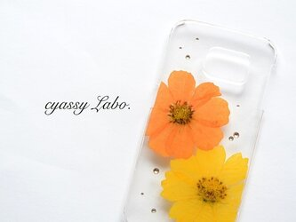 赤橙と蒲公英色の秋桜(コスモス)押し花スマートフォンケースの画像
