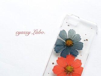 深緋と褐返の秋桜(コスモス)押し花スマートフォンケースの画像