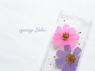 躑躅色と菖蒲色の秋桜(コスモス)押し花スマートフォンケースの画像