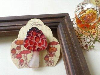 アミガサタケのブローチの画像