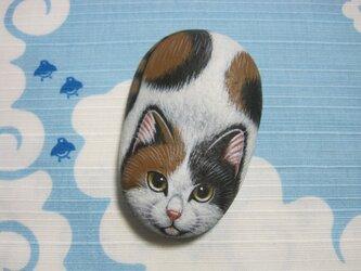 石猫  「三毛」の画像