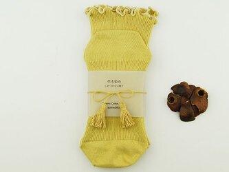 草木染オーガニックコットンしめつけない靴下〜女郎花色〜の画像