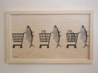 shopping fishの画像