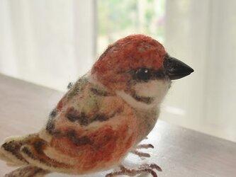 羊毛フェルトの小鳥 すずめの画像