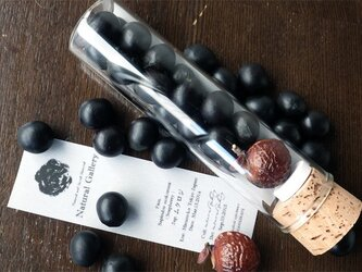"""Seed mania bottle """"Soapberry""""の画像"""
