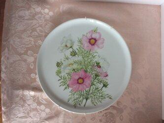 コスモスの絵皿の画像