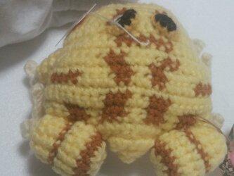 気分屋編み雑貨●ツノガエルブローチ●あみぐるみの画像