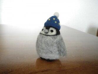 ペンギンさん (winter)の画像