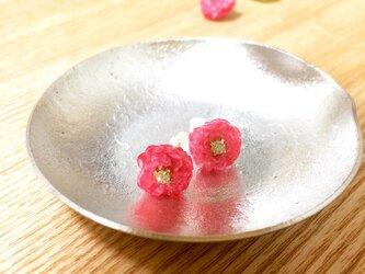 *花*pink*の画像