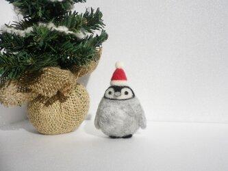 ペンギンさん (christmas)の画像