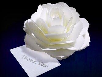 咲くようにひらく 花のサンキューカード〈ローズ〉 forバースデー・ウェディング・アニバーサリー・クリスマス・メッセージカードの画像