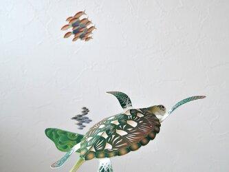 楽園のウミガメの画像