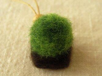 盆栽ストラップ フェルトの苔玉(FST-005-B)の画像