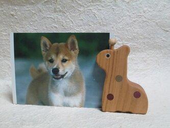 カードホルダー*きりんの画像