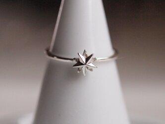 北極星のリング(小)の画像